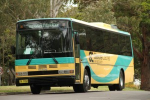 57-seater BUS (1)